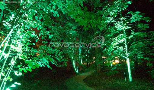 orto botanico padova luci giardino