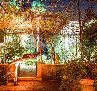 palazzo nani bernardo venezia luci giardino