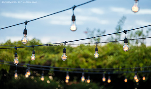 string lights lighting gala dinner gardens outdoor party light design