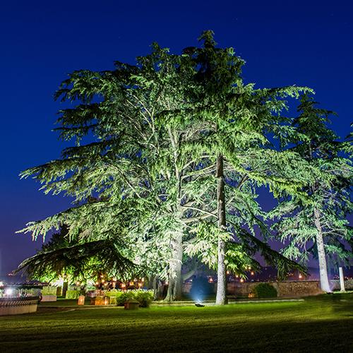 Luci per alberi da giardino
